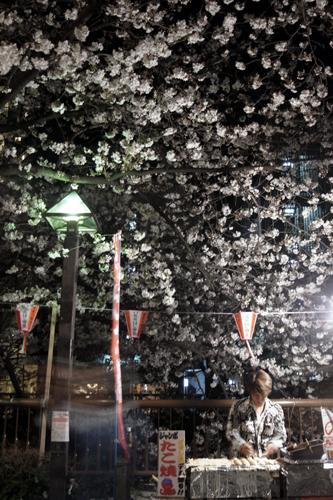 桜とたこ焼きやさん
